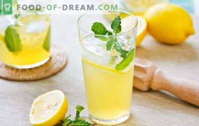 Bebida de limón: energía y vitaminas en un vaso. Recetas de bebidas de limón: limonada fresca o cerveza caliente