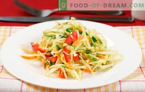 Ensalada de col con pimientos - las mejores recetas. Cocinando una ensalada con col y pimiento dulce.