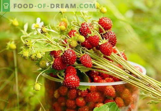 Mermelada de fresa: cómo cocinar la mermelada de fresa correctamente