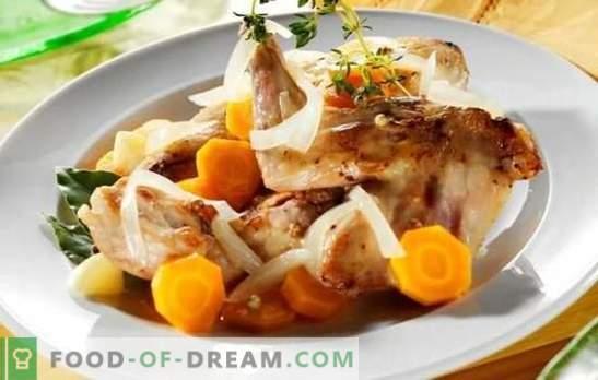 Fricasé de conejo - carne tierna con salsa fragante. Las mejores recetas de fricasé de conejo con crema, crema agria, leche