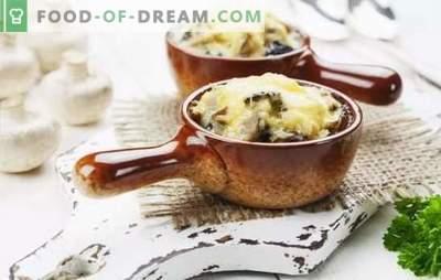 Juliana clásica de pollo y champiñones - ¡es fácil! Secretos del clásico Julienne con pollo y champiñones en cocottes y tartaletas