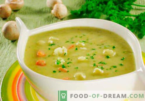 Sopa de queso crema - recetas probadas. Cómo cocinar adecuadamente y cocinar la sopa con queso derretido.