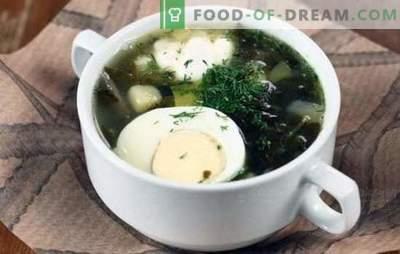 Sopa verde - carga de vitaminas y sabor brillante! Recetas de varias sopas verdes con acedera y con col, champiñones, pescado, ortigas, frijoles