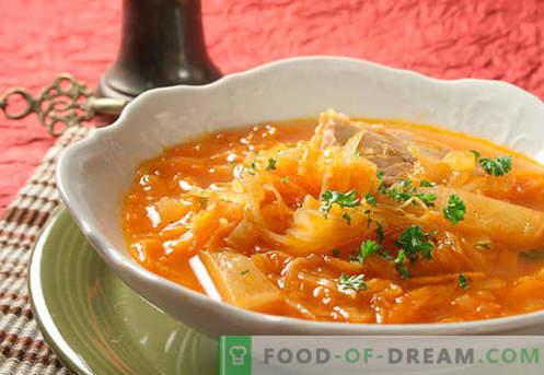 Sopa de fresco y chucrut. Cómo cocinar de forma adecuada y sabrosa la sopa agria, verde y magra en una olla de cocción lenta.