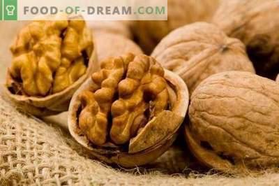Nogal - Descripción, propiedades, uso en la cocina. Recetas de platos con nueces.