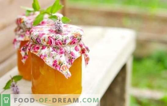 Recetas de mermelada de calabaza rápidamente - el sabor del otoño. La mermelada de calabaza es rápida y sabrosa: con naranja, limón, albaricoques secos, manzanas, etc.