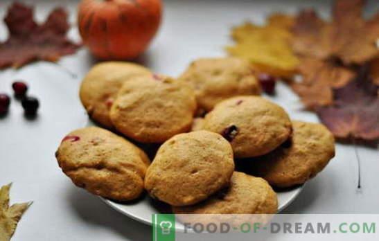 Galletas simples y sabrosas en kéfir - la tradición de hornear en casa. Recetas de galletas sencillas de kéfir: avena, con canela, chocolate, nueces, semillas de amapola, etc.