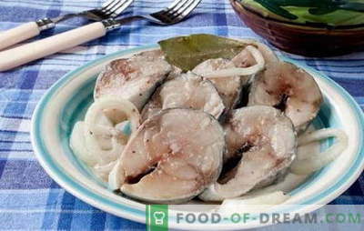 ¡Un embajador de la caballa en casa es tan simple como eso! Diferentes formas de caballa salada casera: seca y húmeda