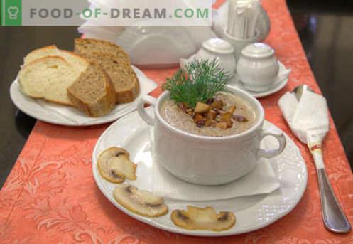 Sopa de puré de champiñones - recetas probadas. Cómo cocinar adecuadamente y deliciosamente una sopa de champiñones.