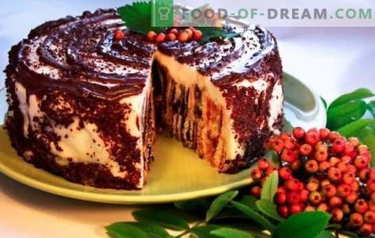Cake Dumpling Stump: recetas paso a paso. Cómo cocinar un delicioso