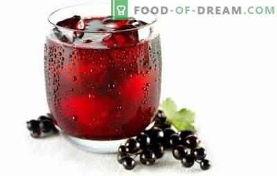 El jugo de grosella es todo un ejército de vitaminas! Recetas de diferentes jugos de grosella roja y negra