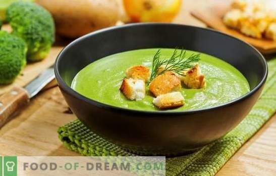 Sopa de puré de brócoli: para la salud, la mente y la bella figura. Recetas para las sopas de crema de brócoli con crema, queso, pollo, champiñones