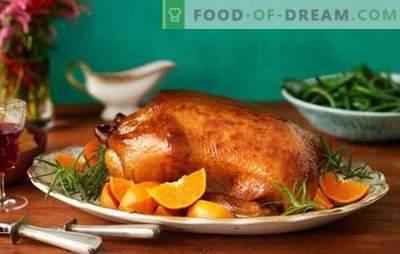¿Cómo elegir y cocinar todo el ganso?