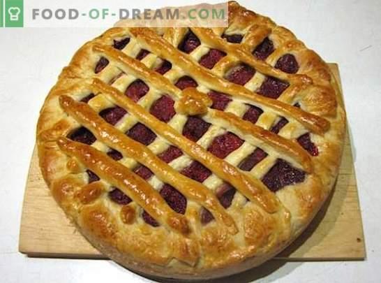 Hornear con fresas: recetas con fotos y pequeños trucos. Una selección de recetas destacadas para hornear con fresas: foto
