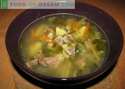 Pickle con riñones - las mejores recetas. Cómo cocinar apropiadamente y con gusto el encurtido con riñón