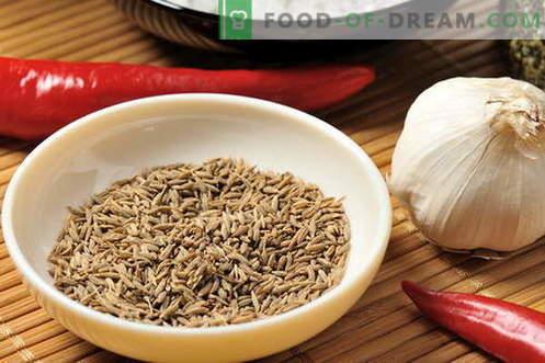 Zira - propiedades y uso en la cocina. Recetas con Zira.