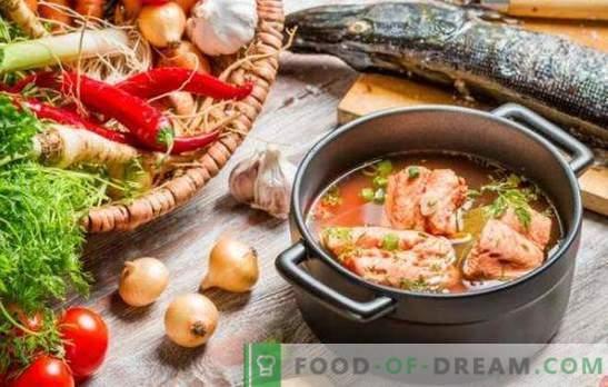 Sopa de pescado rojo - excelente sabor y máximo beneficio. Una selección de las mejores recetas de sopa de pescado rojo con mijo, tomates, caviar rojo