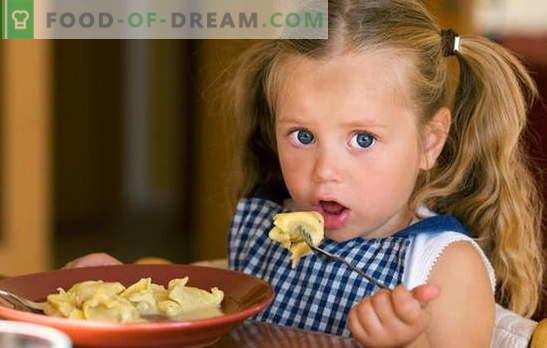 Bolas de masa para niños - ¡un poco de creatividad! Recetas para diferentes albóndigas para niños: perezosas, con requesón, carne, bayas, verduras