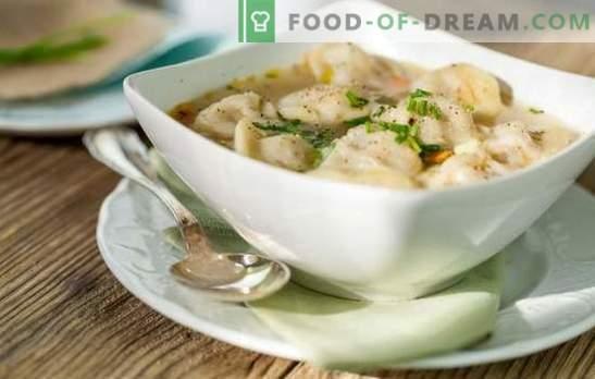 Deliciosas albóndigas con caldo de carne, champiñones, verduras y verduras. Recetas originales de albóndigas con caldo para la familia e invitados