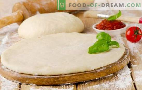 La masa de pizza con leche es una base sabrosa para un plato sabroso. Cocinar una variedad de masa de pizza con leche: exuberante, suave y crujiente
