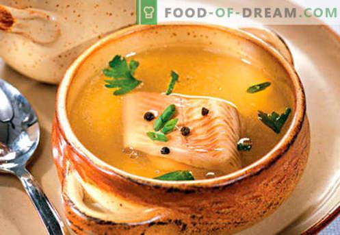 Caldo de pescado - las mejores recetas. Cómo cocinar correctamente y sabroso el caldo de pescado.