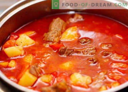 Goulash de cerdo - las mejores recetas. Cómo cocinar correctamente y sabroso el gulash de cerdo.