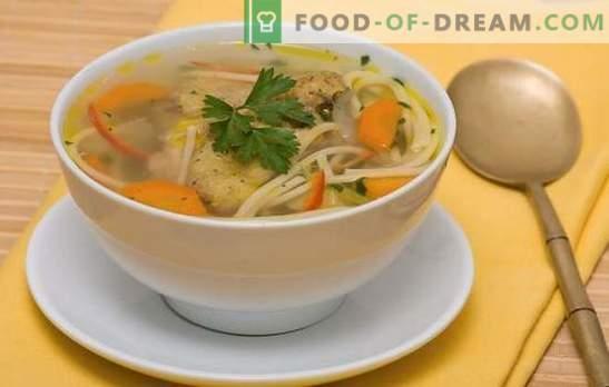 Sopa de pollo con fideos - almuerzo ligero, sabroso y abundante. Recetas de sopa de pollo con fideos: con verduras, champiñones, queso