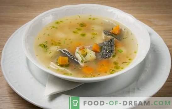 Productos modestos, resultado brillante - la oreja de los peces de río. Cocinando sopa rica de pescado de pescado de río en una cacerola y en ollas