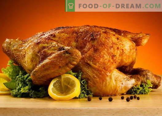 Pollo con costra - las mejores recetas. Cómo cocinar correctamente y sabroso un pollo con costra.