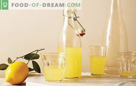 Tintura sobre limón: detalles sabrosos y fascinantes. Recetas de las tinturas más populares sobre el limón para la salud y el placer