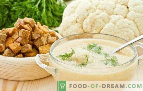 Sopa de puré de coliflor: dietética y tierna. Las mejores recetas para la sopa de puré de coliflor con queso, carne, pescado