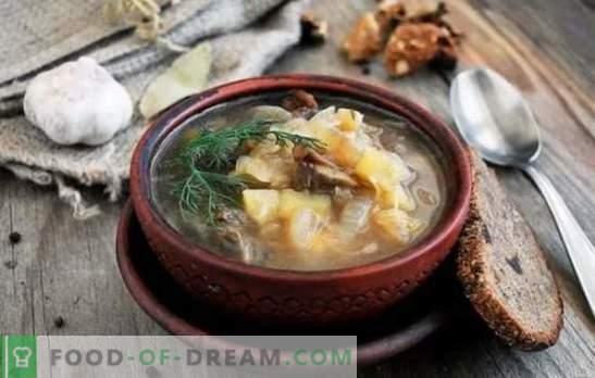 Deleite su hogar con una deliciosa sopa de col fresca con champiñones. Recetas para la fragante sopa de col fresca con champiñones