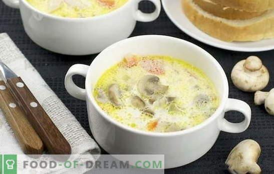 Sopa crema de champiñones: clásica y original. Recetas de sopa de crema de champiñones light para cenas de negocios y caseras