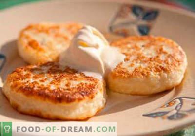 Pasteles de queso con sémola - las mejores recetas. Cómo cocinar de forma rápida y sabrosa los pasteles de queso con sémola.