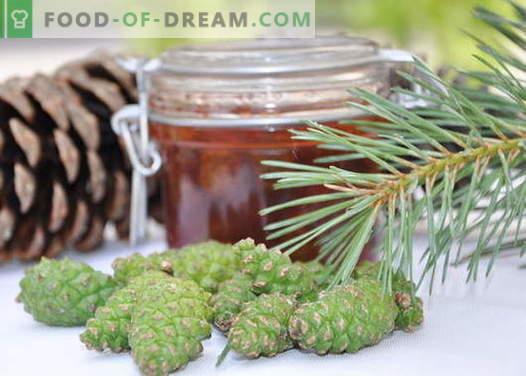 Mermelada de conos de pino: cómo cocinar correctamente