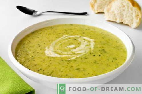 Sopa de calabacín - las mejores recetas. Cómo cocinar correctamente y sabrosamente las sopas de calabacín.
