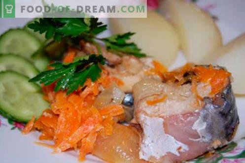 Guiso de caballa - las mejores recetas. Cómo cocinar correctamente y sabroso estofado de caballa.