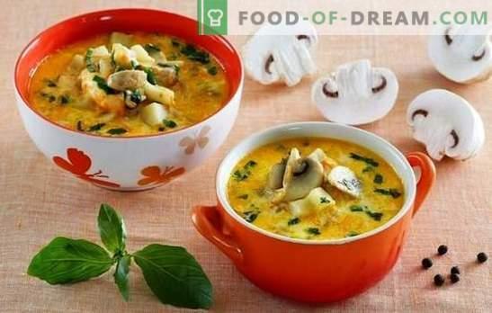 Sopa con champiñones y queso: ¡mima a tu familia! Una selección de las mejores recetas de sopa con champiñones y queso fundido