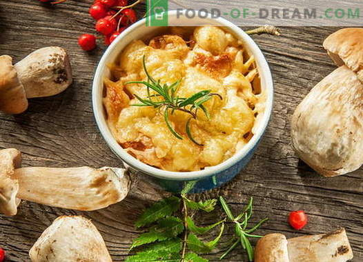 Juliana de pollo con champiñones - las mejores recetas. Cómo cocinar pollo juliana.