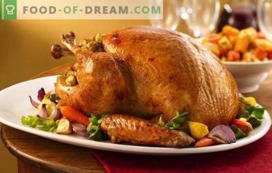 Pavo de pavo con verduras: ¡sabroso, saludable, hermoso! Una selección de recetas de dieta y de vacaciones para pavo con verduras