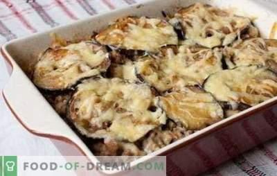 Cazuela de carne picada y berenjena en el horno - ¡una cena maravillosa! Recetas de diferentes guisos de carne picada y berenjenas en el horno