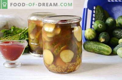Trozos de pepino en salsa de tomate picante para el invierno