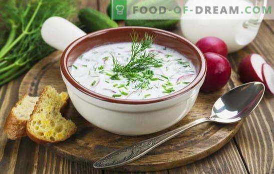 Okroshka, sopa de remolacha y otras sopas de kéfir, vegetales y con carne. Recetas italianas, españolas y rusas para sopas de kéfir