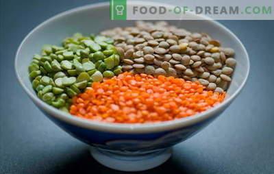 Cómo cocinar lentejas rojas, verdes, marrones, negras. Formas simples de cocinar las lentejas en una sartén y una olla de cocción lenta: secretos y trucos