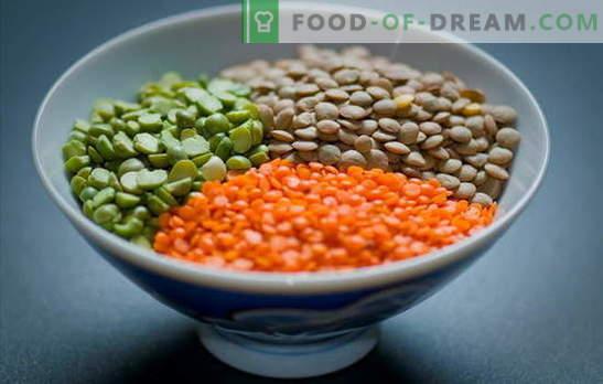 Cómo Cocinar Lentejas Rojas Verdes Marrones Negras Formas Simples De Cocinar Las Lentejas En Una Sartén Y Una Olla De Cocción Lenta Secretos Y Trucos