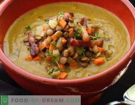 Sopa de lentejas - las mejores recetas. Cómo cocinar adecuadamente y sabrosa la sopa de lentejas.