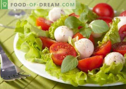 Ensalada con tomates y queso - recetas culinarias probadas. Cómo cocinar una ensalada con tomate y queso.