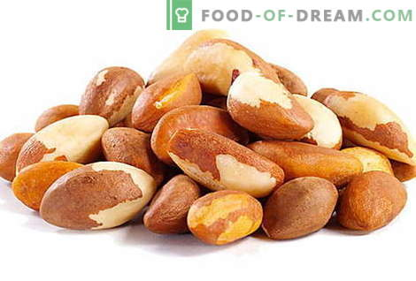 Nuez de Brasil - descripción, propiedades útiles, uso en la cocina. Recetas con nueces de Brasil.