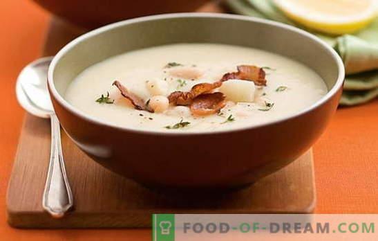 Sopa de frijoles blancos - ¡un conocido agradable! Recetas para diferentes sopas de frijoles blancos: tomate, carne, queso, ahumado, champiñones