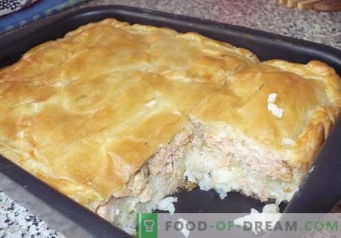 Empanadas de filete con col, papas, kéfir y una olla de cocción lenta. Las mejores recetas de tartas de gelatina.